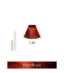 Eva Professional Divina.One Vopsea de par 7.46 Cognac Coppery