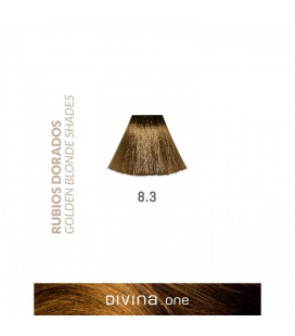 Vopsea de par 8.3 Caribbean Blonde 100 ml Divina.One Eva Professional