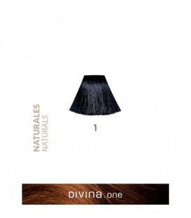 Vopsea de par 1 Black / Negru 100 ml Divina.One Eva Professional