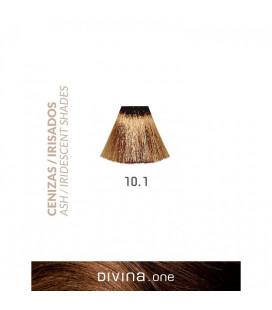 Vopsea de par 10.1 Platinum Ash 100 ml Divina.One Eva Professional