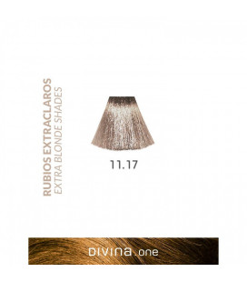 Vopsea de par 11.17 Nordic Extra Blonde 100 ml Divina.One Eva Professional
