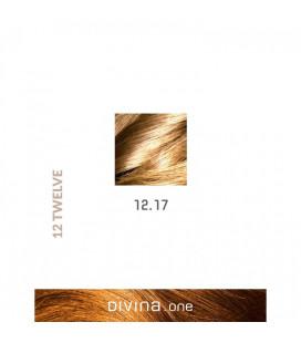 Vopsea de par 12.17 Ultra Silver Ash Blonde 100 ml Divina.One Eva Professional