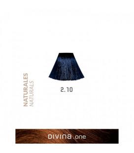 Vopsea de par 2.10 Bluish Black 100 ml Divina.One Eva Professional