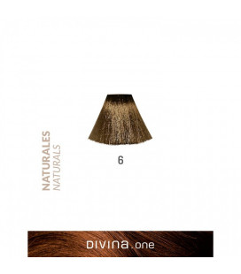 Vopsea de par 6 Dark Blonde 100 ml Divina.One Eva Professional