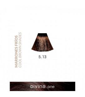 Vopsea de par 5.13 Copenhagen Brown 100 ml Divina.One Eva Professional
