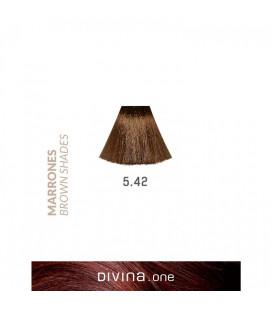 Vopsea de par 5.42 Hurricane Brown 100 ml Divina.One Eva Professional