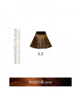 Vopsea de par 5.3 Panna Brown 100 ml Divina.One Eva Professional