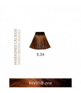 Vopsea de par 5.34 Miami Brown 100 ml Divina.One Eva Professional
