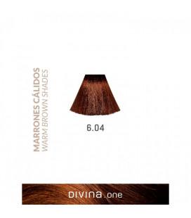Vopsea de par 6.04 Praline Brown 100 ml Divina.One Eva Professional
