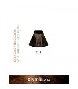 Vopsea de par 5.1 Dark Ash 100 ml Divina.One Eva Professional