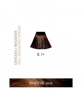 Vopsea de par 6.1+ Dark Ash Plus 100 ml Divina.One Eva Professional