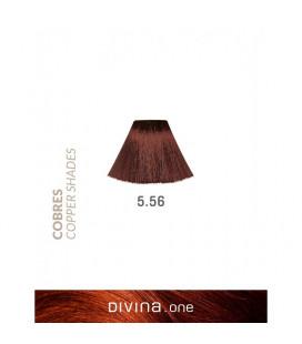 Vopsea de par 5.56 Daiquiri Coppery 100 ml Divina.One Eva Professional