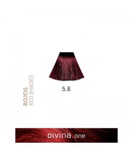 Vopsea de par 5.6 Dark Red 100 ml Divina.One Eva Professional