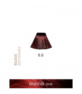 Vopsea de par 6.6 Burgundy Red 100 ml Divina.One Eva Professional