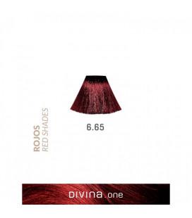 Vopsea de par 6.65 Cherry Red 100 ml Divina.One Eva Professional