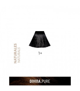 Vopsea de par fara amoniac  1+ Black Plus 60 ml  Divina.Pure Eva Professional