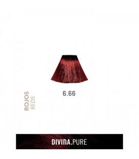 Vopsea de par fara amoniac  6.66 Deep Garnet Red 60 ml  Divina.Pure  Eva Professional