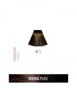 Vopsea de par fara amoniac 6.1 Dark Ash 60 ml Divina.Pure Eva Professional