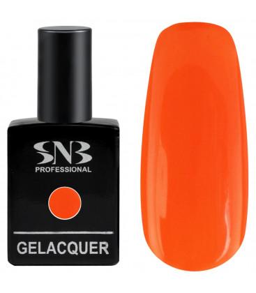 SNB Gelacquer  Lac semi-permanent 105
