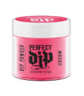 Artistic Nail Design Pudra Perfect Dip Owned