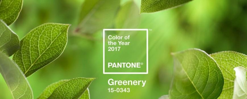 Culorile anului 2017